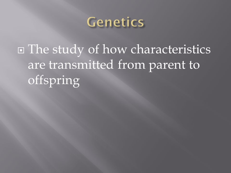  The study of how characteristics are transmitted from parent to offspring