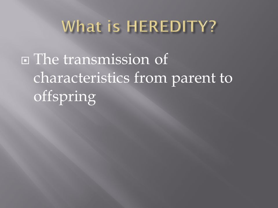  The transmission of characteristics from parent to offspring