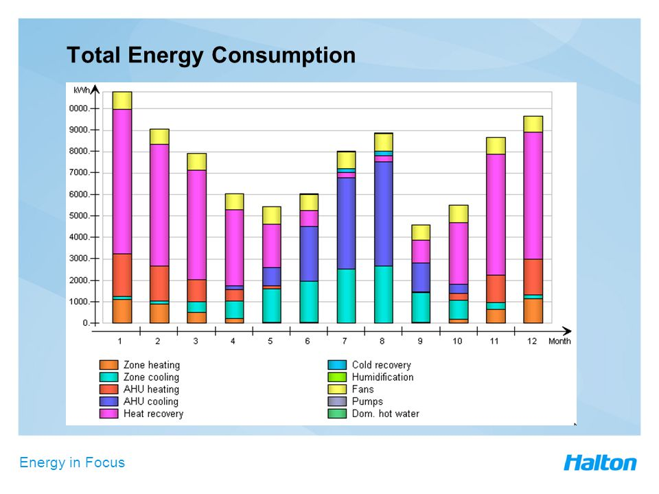 Energy in Focus Total Energy Consumption