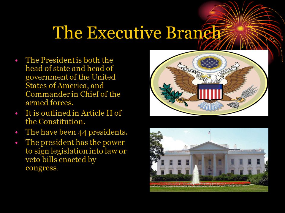 The Executive Branch The President is both the head of state and head of government of the United States of America, and Commander in Chief of the armed forces.