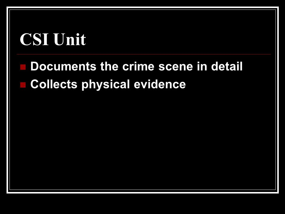 CSI Unit Documents the crime scene in detail Collects physical evidence