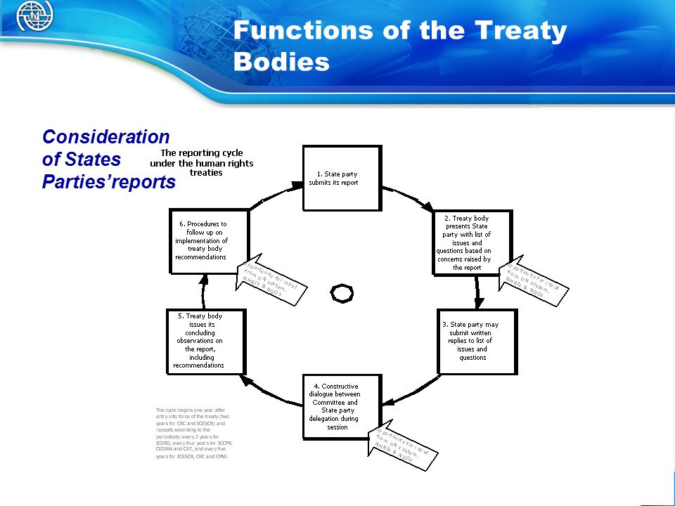 25 Functions of the Treaty Bodies Consideration of States Parties'reports