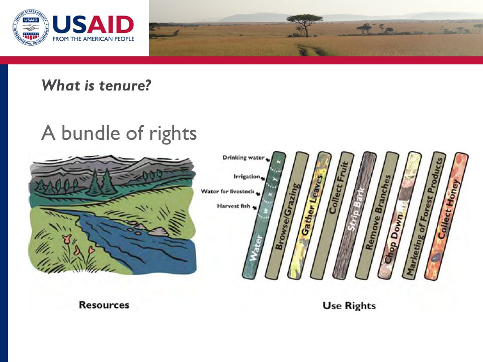 What is tenure A bundle of rights