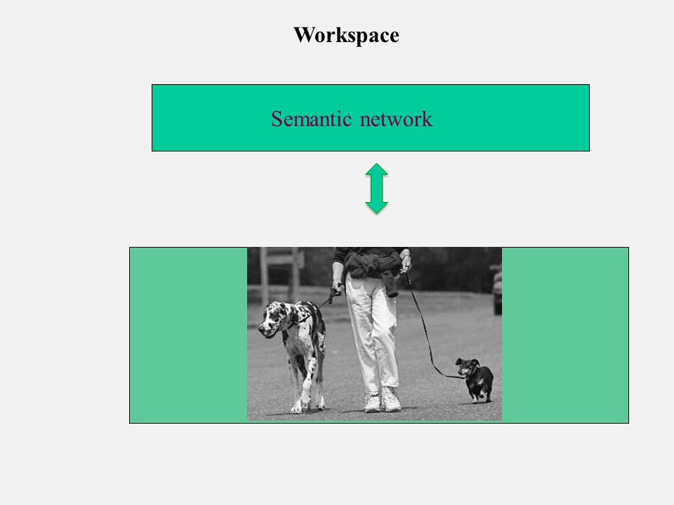 Semantic network Workspace