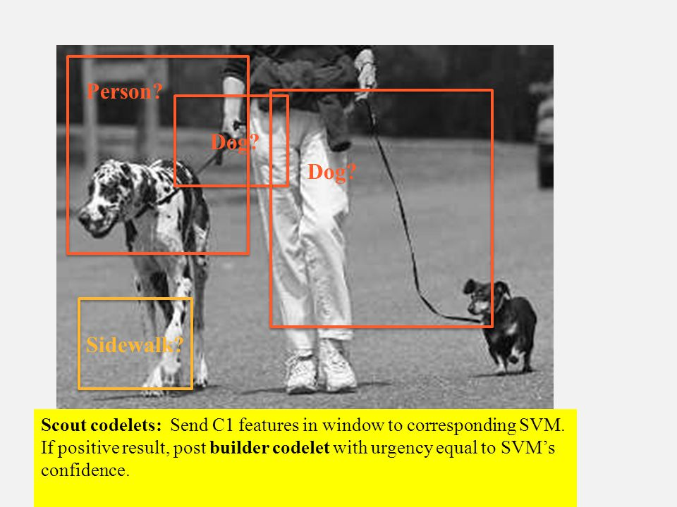 Dog. Sidewalk. Person. Scout codelets: Send C1 features in window to corresponding SVM.