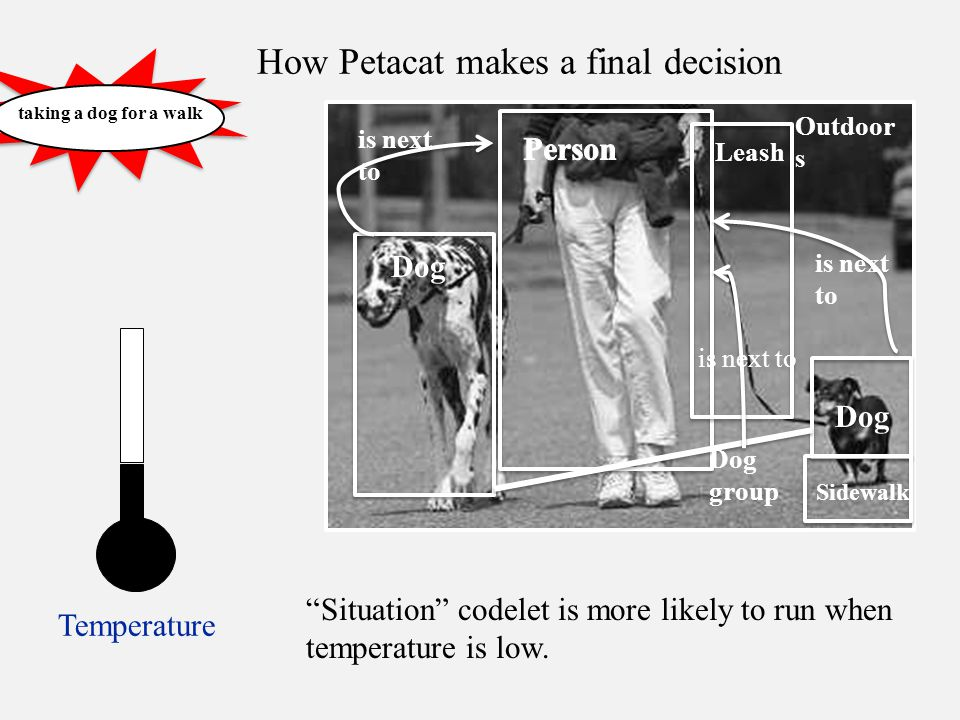 How Petacat makes a final decision Temperature taking a dog for a walk Dog Outdoor s Leash Dog is next to Dog group Sidewalk Situation codelet is more likely to run when temperature is low.