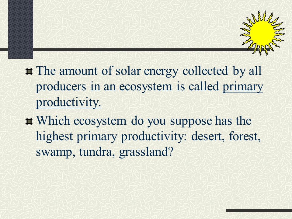 The amount of solar energy collected by all producers in an ecosystem is called primary productivity.