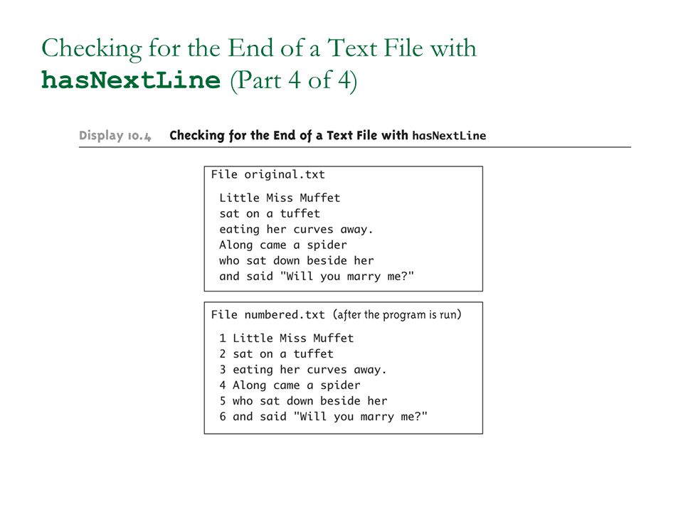 Checking for the End of a Text File with hasNextLine (Part 4 of 4)