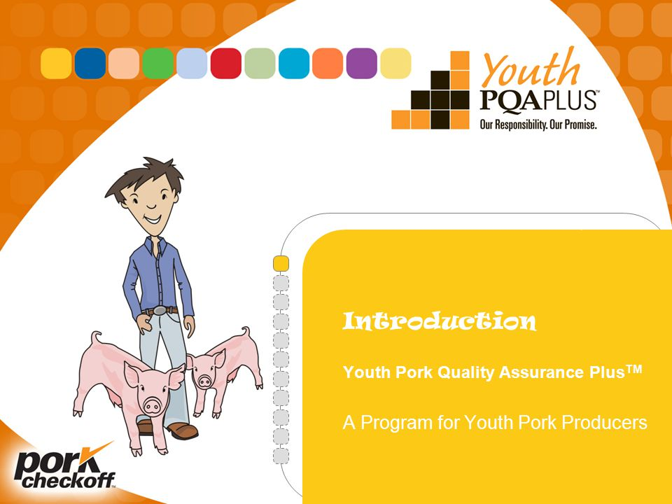 Introduction Youth Pork Quality Assurance Plus TM A Program for Youth Pork Producers
