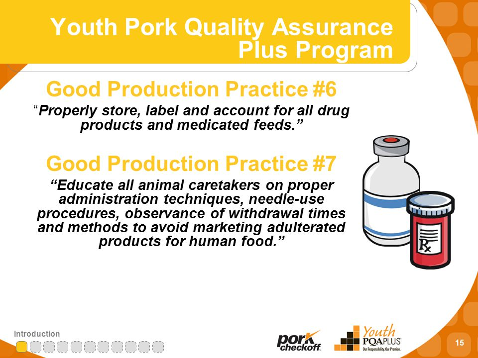 15 Introduction Good Production Practice #6 Properly store, label and account for all drug products and medicated feeds. Good Production Practice #7 Educate all animal caretakers on proper administration techniques, needle-use procedures, observance of withdrawal times and methods to avoid marketing adulterated products for human food. Youth Pork Quality Assurance Plus Program