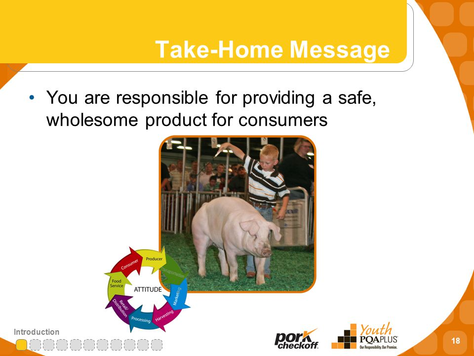 18 Introduction Take-Home Message You are responsible for providing a safe, wholesome product for consumers