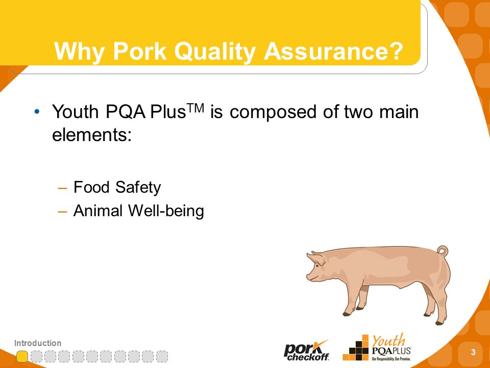 3 Introduction Why Pork Quality Assurance.