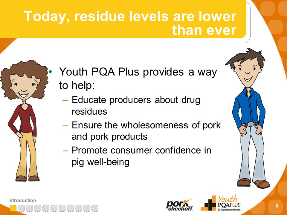 5 Introduction Today, residue levels are lower than ever Youth PQA Plus provides a way to help: –Educate producers about drug residues –Ensure the wholesomeness of pork and pork products –Promote consumer confidence in pig well-being
