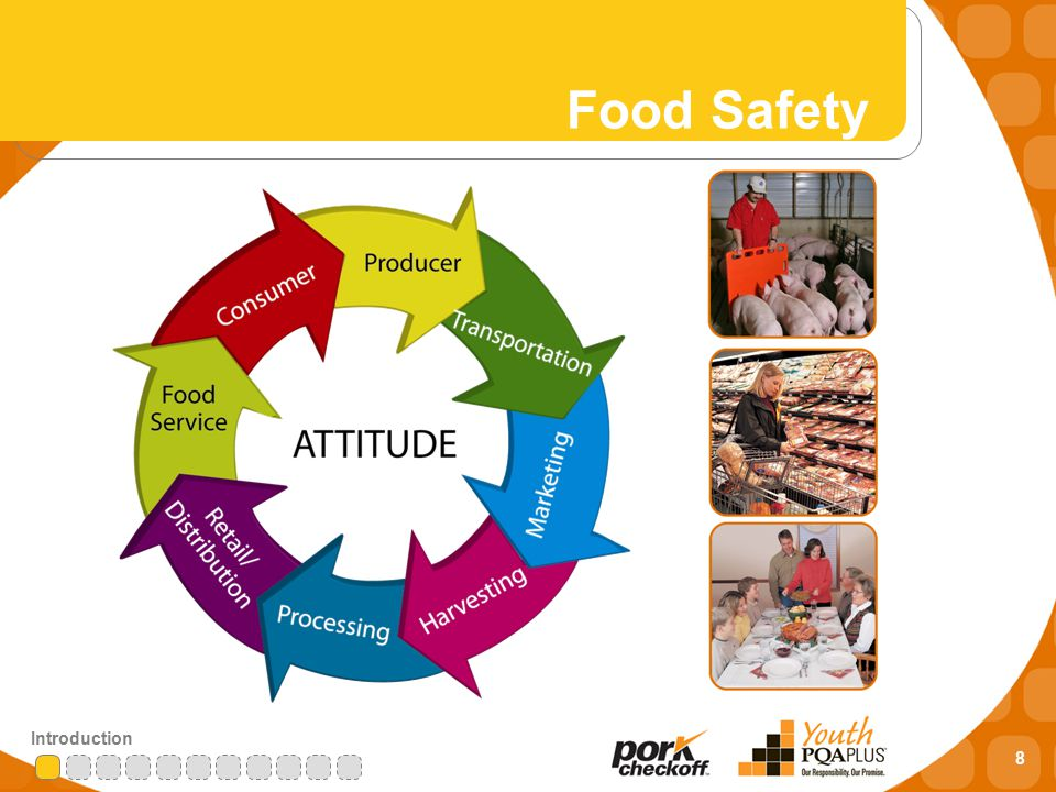 8 Introduction Food Safety