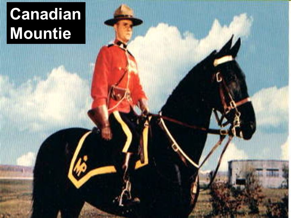 Canadian Mountie Canadian Mountie