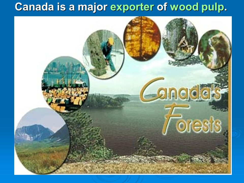 Canada is a major exporter of wood pulp.