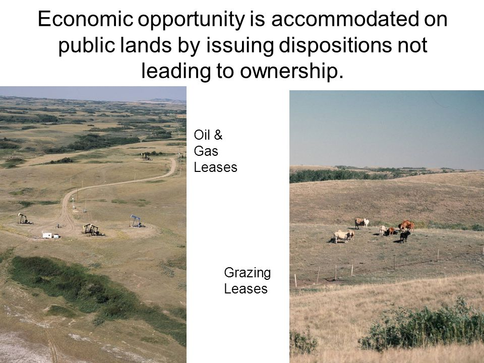 Economic opportunity is accommodated on public lands by issuing dispositions not leading to ownership.