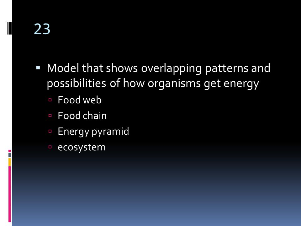 23  Model that shows overlapping patterns and possibilities of how organisms get energy  Food web  Food chain  Energy pyramid  ecosystem