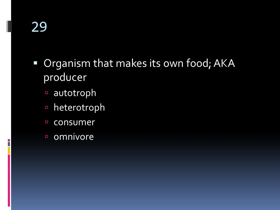 29  Organism that makes its own food; AKA producer  autotroph  heterotroph  consumer  omnivore