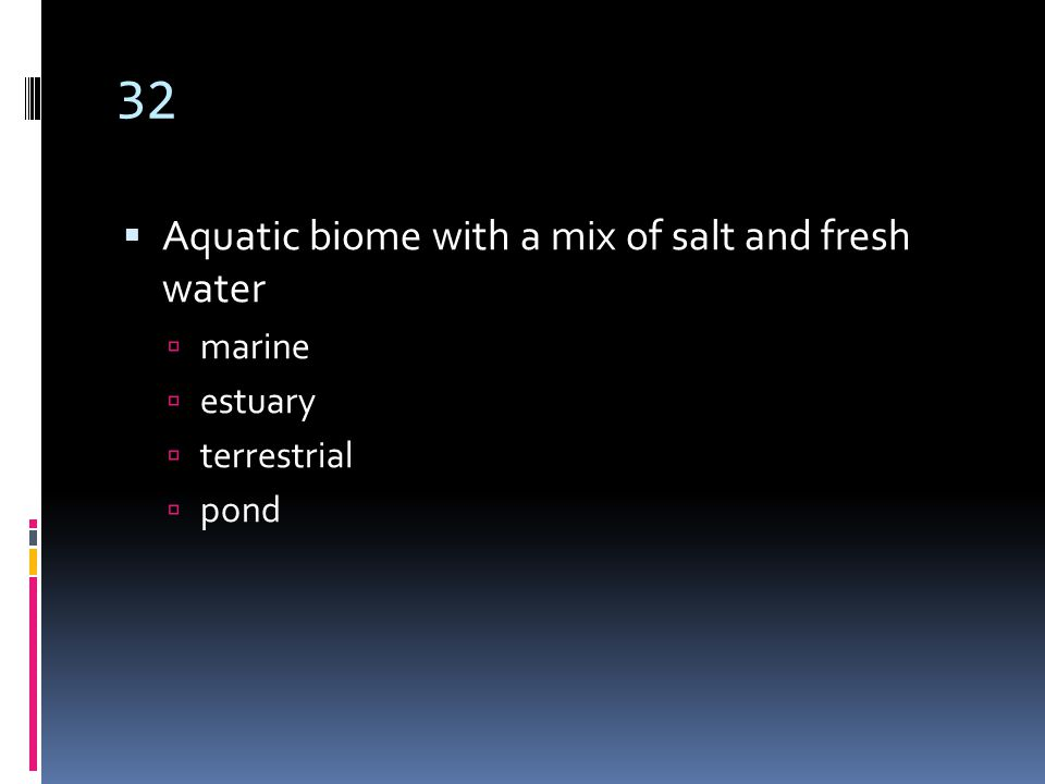 32  Aquatic biome with a mix of salt and fresh water  marine  estuary  terrestrial  pond