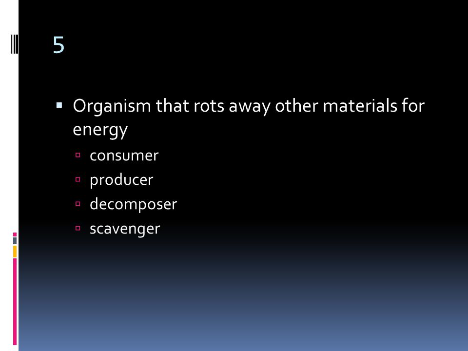 5  Organism that rots away other materials for energy  consumer  producer  decomposer  scavenger
