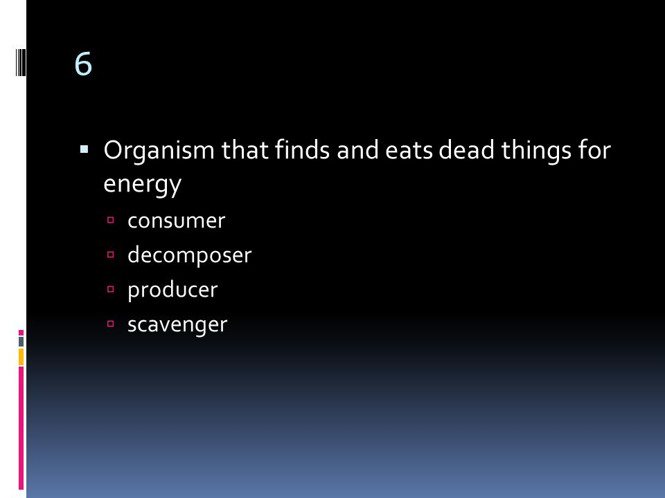 6  Organism that finds and eats dead things for energy  consumer  decomposer  producer  scavenger