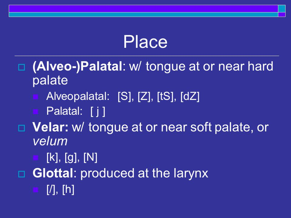 Place  (Alveo-)Palatal: w/ tongue at or near hard palate Alveopalatal: [S], [Z], [tS], [dZ] Palatal: [ j ]  Velar: w/ tongue at or near soft palate, or velum [k], [g], [N]  Glottal: produced at the larynx [/], [h]