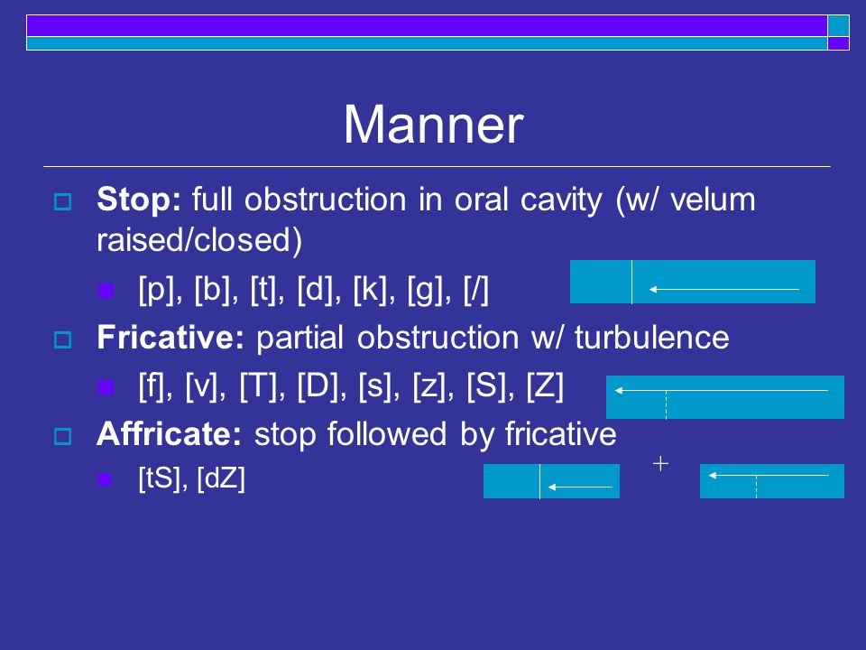 Manner  Stop: full obstruction in oral cavity (w/ velum raised/closed) [p], [b], [t], [d], [k], [g], [/]  Fricative: partial obstruction w/ turbulence [f], [v], [T], [D], [s], [z], [S], [Z]  Affricate: stop followed by fricative [tS], [dZ] +