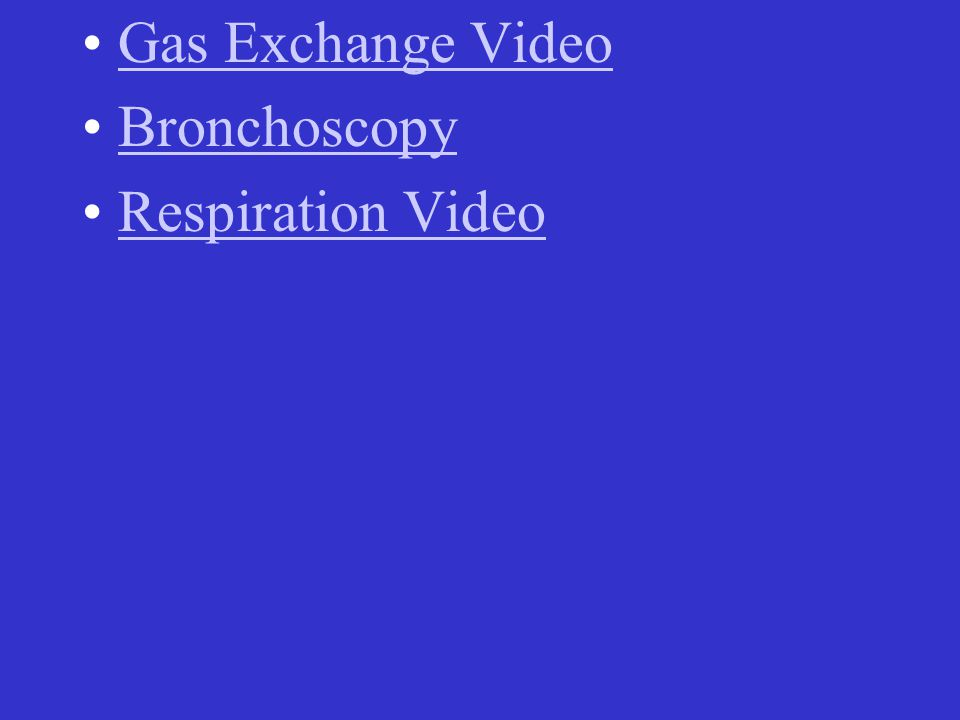 Gas Exchange Video Bronchoscopy Respiration Video