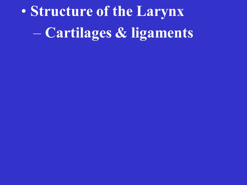 Structure of the Larynx – Cartilages & ligaments