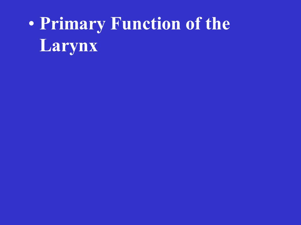 Primary Function of the Larynx