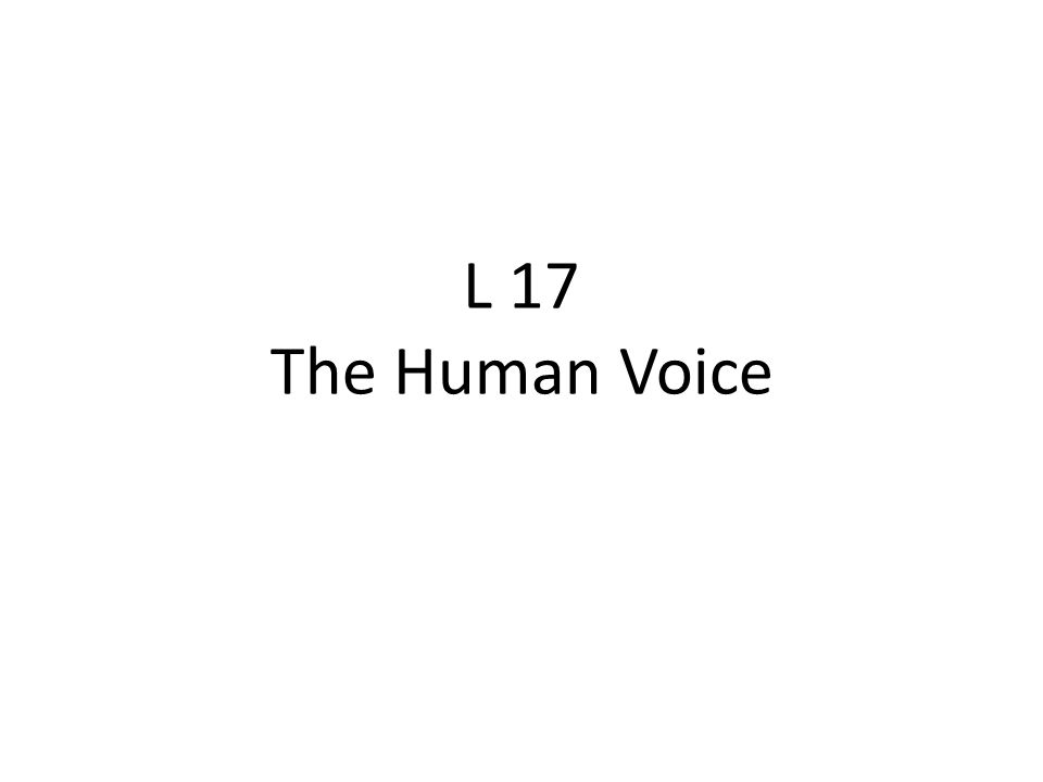 L 17 The Human Voice