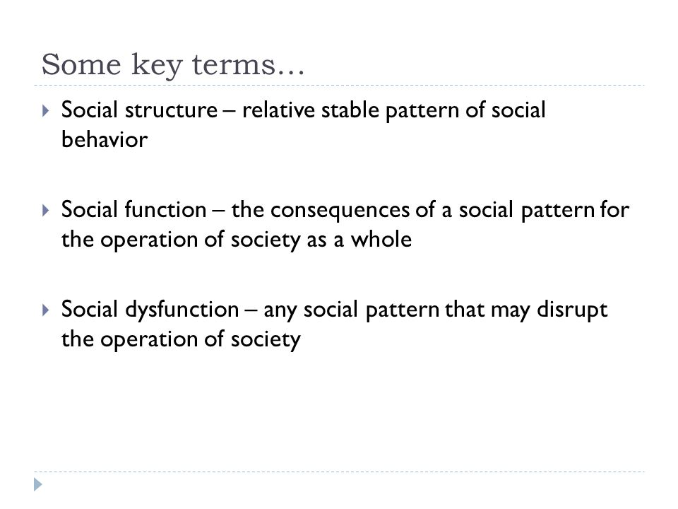 Some key terms…  Social structure – relative stable pattern of social behavior  Social function – the consequences of a social pattern for the operation of society as a whole  Social dysfunction – any social pattern that may disrupt the operation of society