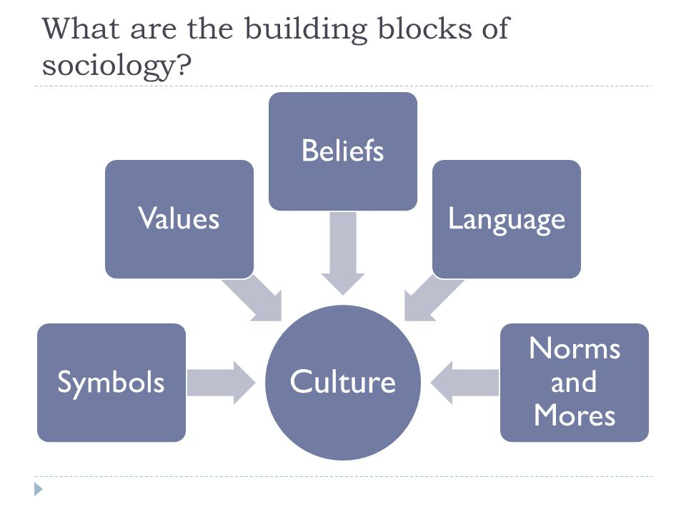 What are the building blocks of sociology Culture SymbolsValuesBeliefsLanguage Norms and Mores