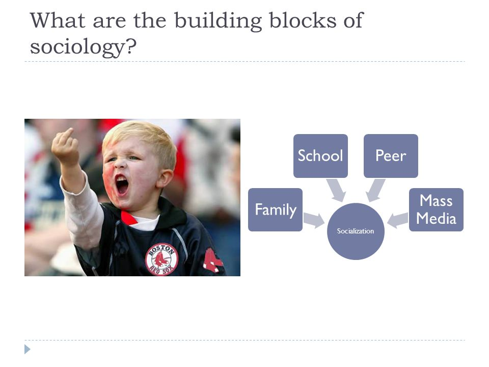 What are the building blocks of sociology Socialization FamilySchoolPeer Mass Media
