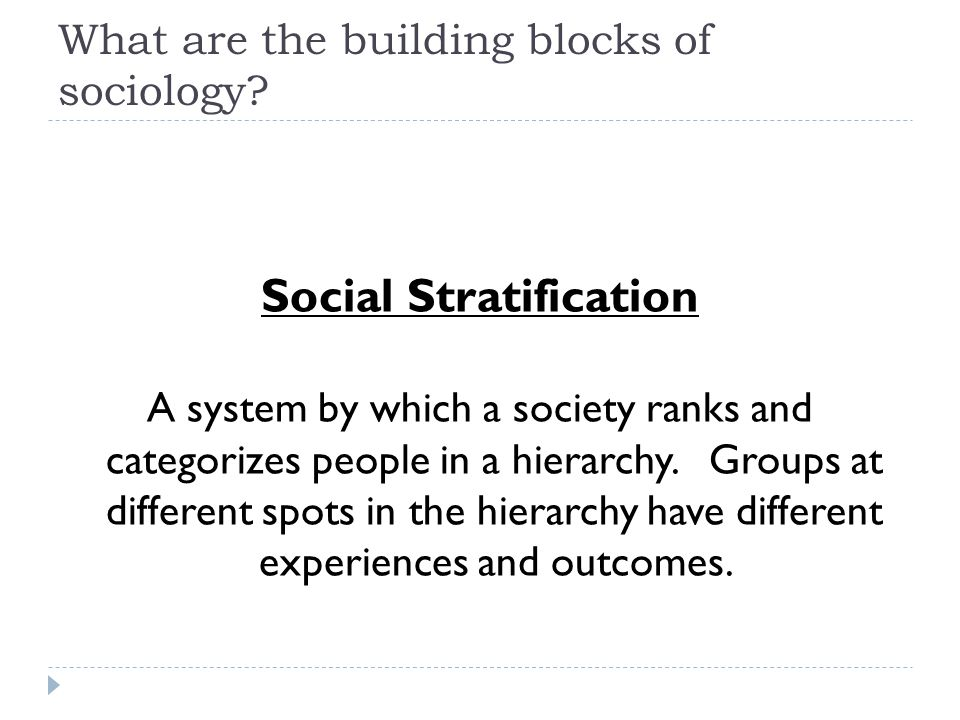 What are the building blocks of sociology.