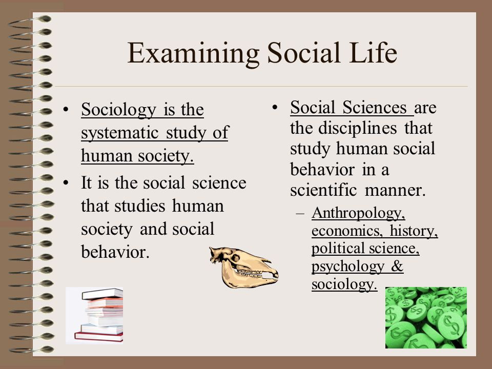 Examining Social Life Sociology is the systematic study of human society. It is the social science that studies human society and social behavior. Soc
