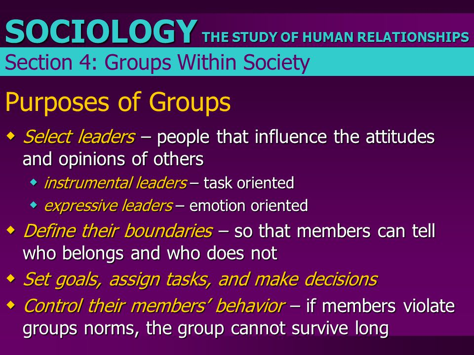 THE STUDY OF HUMAN RELATIONSHIPS SOCIOLOGY Purposes of Groups  Select leaders – people that influence the attitudes and opinions of others  instrume