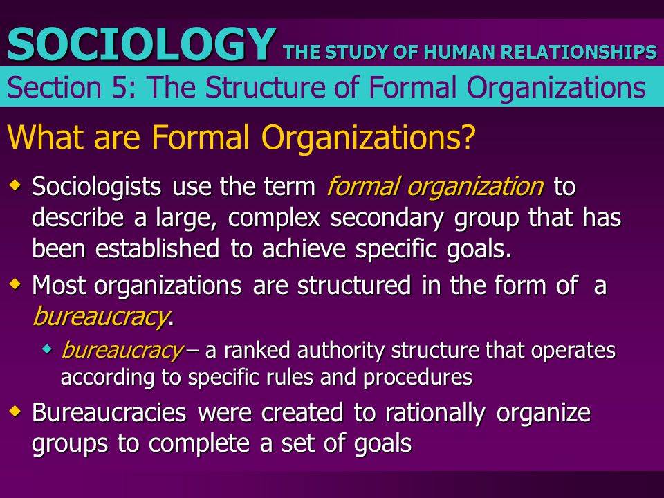 THE STUDY OF HUMAN RELATIONSHIPS SOCIOLOGY What are Formal Organizations?  Sociologists use the term formal organization to describe a large, complex