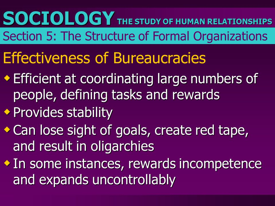 THE STUDY OF HUMAN RELATIONSHIPS SOCIOLOGY Effectiveness of Bureaucracies  Efficient at coordinating large numbers of people, defining tasks and rewa