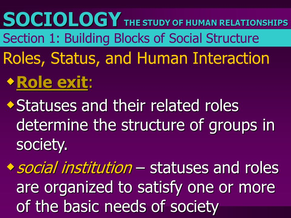 THE STUDY OF HUMAN RELATIONSHIPS SOCIOLOGY Roles, Status, and Human Interaction  Role exit:  Statuses and their related roles determine the structur