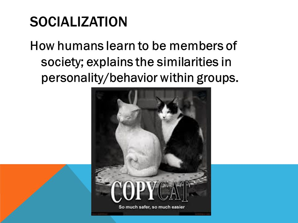 SOCIALIZATION How humans learn to be members of society; explains the similarities in personality/behavior within groups.