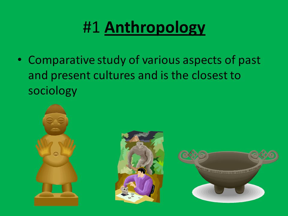 #1 Anthropology Comparative study of various aspects of past and present cultures and is the closest to sociology