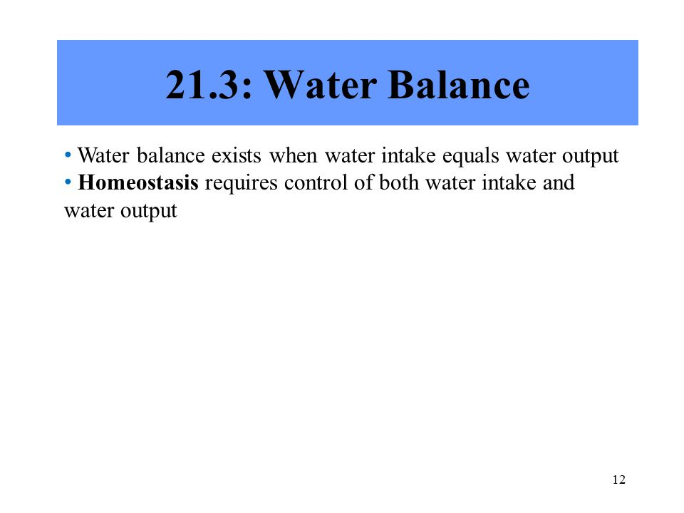 : Water Balance Water balance exists when water intake equals water output Homeostasis requires control of both water intake and water output