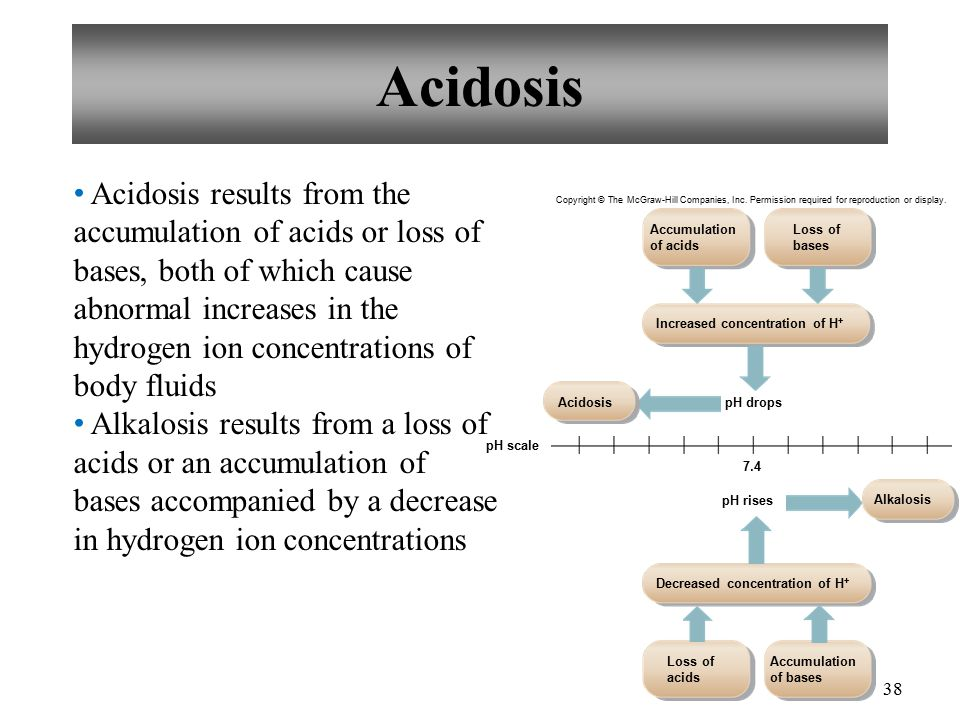 38 Acidosis Acidosis results from the accumulation of acids or loss of bases, both of which cause abnormal increases in the hydrogen ion concentrations of body fluids Alkalosis results from a loss of acids or an accumulation of bases accompanied by a decrease in hydrogen ion concentrations Copyright © The McGraw-Hill Companies, Inc.