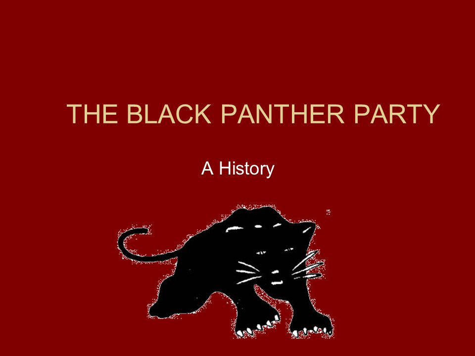 the history of black panther party and its original vision The history of the black panther party is controversial the black panther party first publicized its original ten-point program on may 15, 1967.