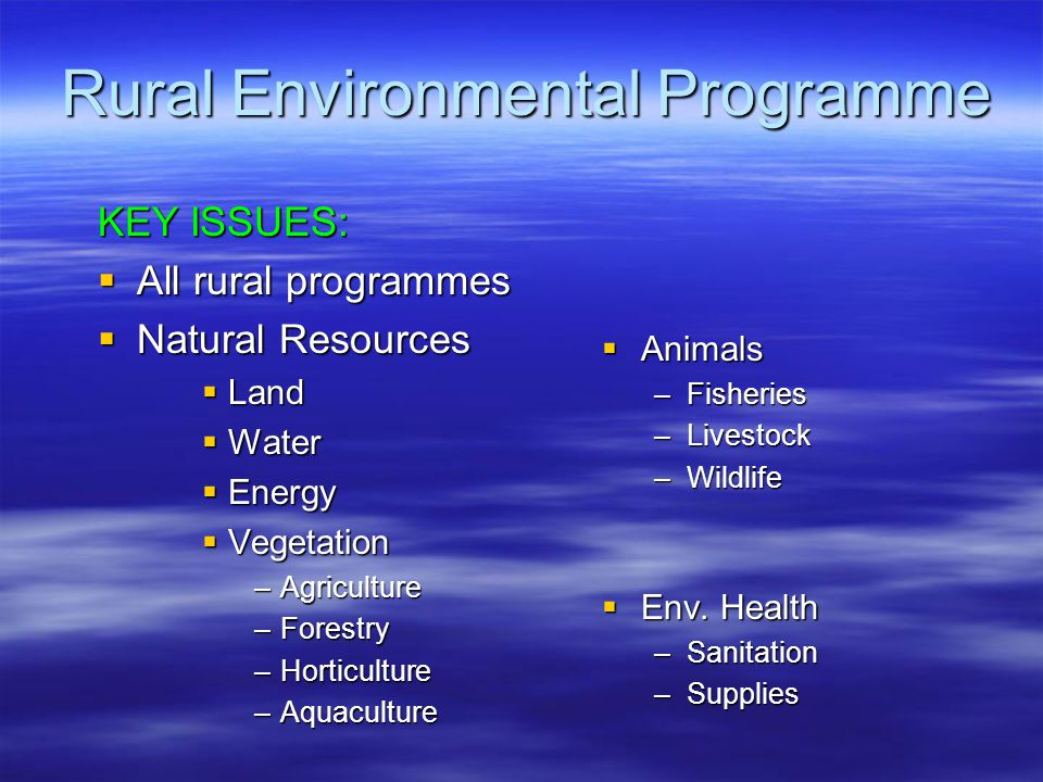 Rural Environmental Programme KEY ISSUES:  All rural programmes  Natural Resources  Land  Water  Energy  Vegetation –Agriculture –Forestry –Horticulture –Aquaculture  Animals –Fisheries –Livestock –Wildlife  Env.