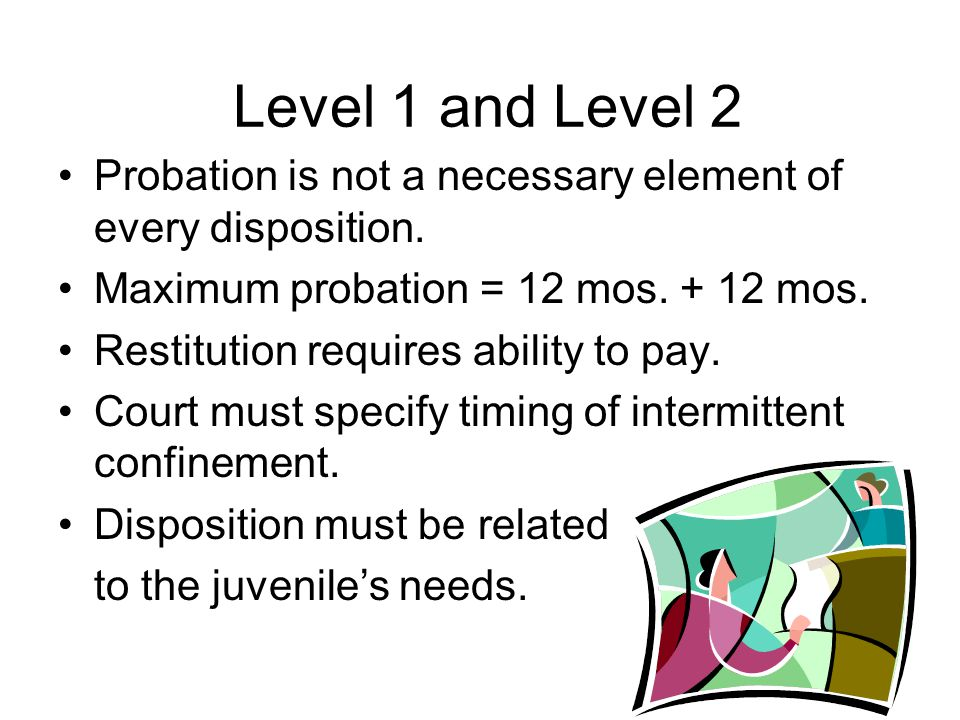 Level 1 and Level 2 Probation is not a necessary element of every disposition.
