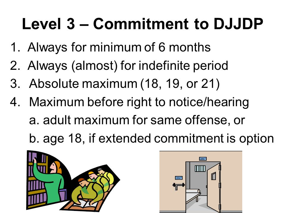 Level 3 – Commitment to DJJDP 1. Always for minimum of 6 months 2.