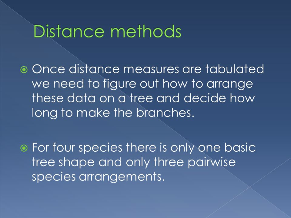  Once distance measures are tabulated we need to figure out how to arrange these data on a tree and decide how long to make the branches.